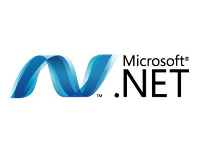 DOT NET EXPERTISE